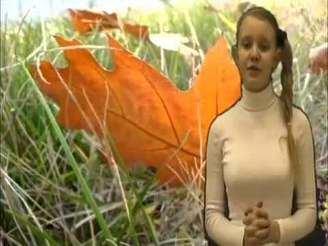 Изображение предпросмотра прочтения – ЕкатеринаБахтина читает произведение «Листок (Дубовый листок оторвался от ветки родимой…)» М.Ю.Лермонтова