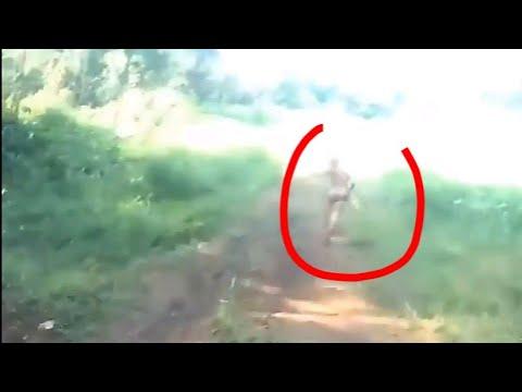 Заснято странное существо, в лесах Суматры