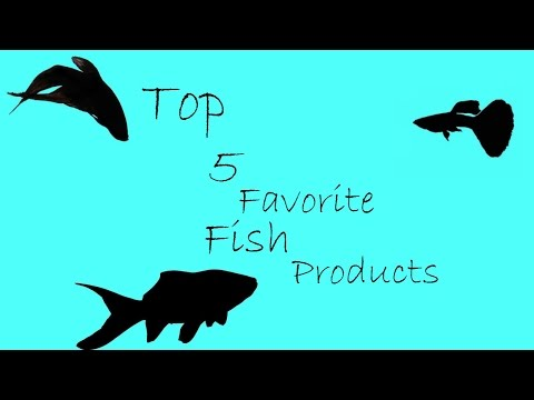 My top 5 favorite fish products