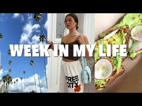 VLOG: a week in los angeles!