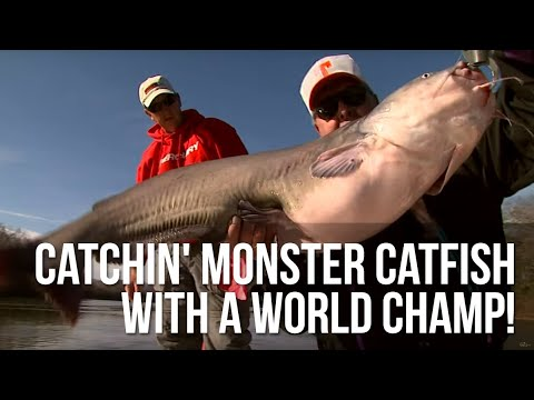 Catchin' MONSTER Catfish With A World Champ!