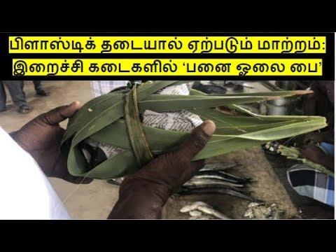 பிளாஸ்டிக் தடையால் மாற்றம் தந்த பனை ஓலை | IN4net