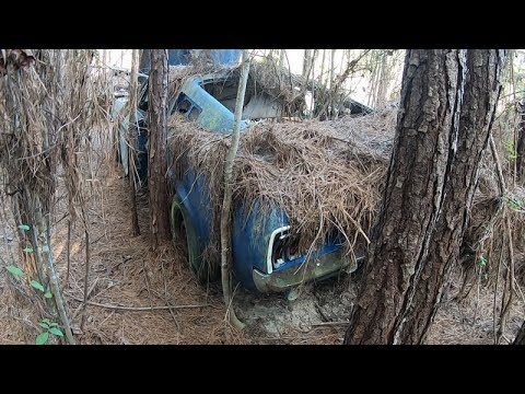 Barn Finds - 56 Classic Mustangs Discovered in Woods in Louisiana - part 2