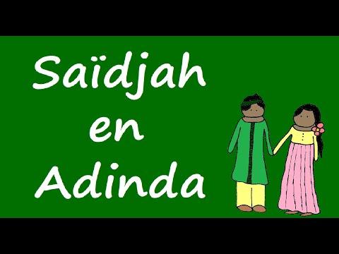 Samenvatting Max Havelaar: Saïdjah en Adinda (De Alphaman)