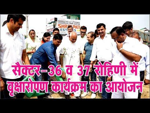 #hindi #breaking #news #apnidilli सैक्टर-36 व 37 रोहिणी में वृक्षारोपण कार्यक्रम का आयोजन