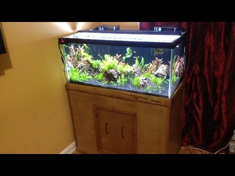 Diy stand for a 40 gallon breeder tank youtube for 40 gallon fish tank stand