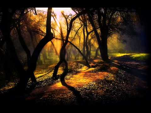 Grieg - Peace of the woods