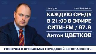 О безопасности образовательных организаций (Антон Цветков,