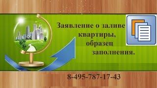 видео Образец претензии в управляющую компанию или ЖЭК о затоплении квартиры, акт о заливе, образец искового заявления в суд