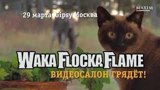 Waka Flocka Flame раскачает Видеосалон!