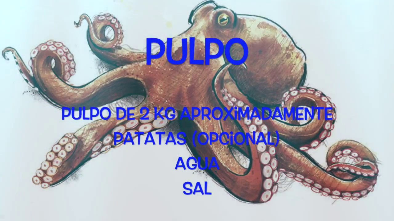 como cocer pulpo fresco youtube