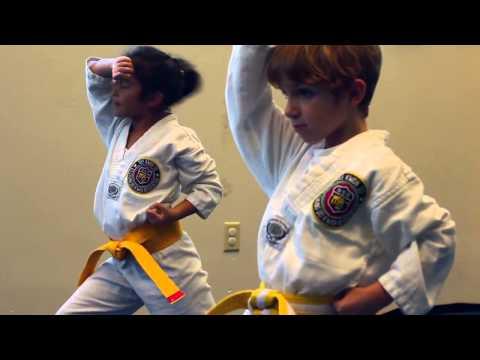 Interactive Academy - Taekwondo