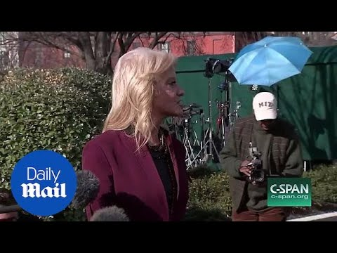 'You're such a smart ass' Kellyanne Conway RIPS into Jim Acosta
