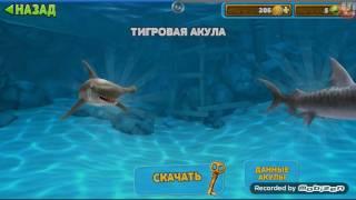 Прохождение игры Hungry SHARK EVOLUTION #1