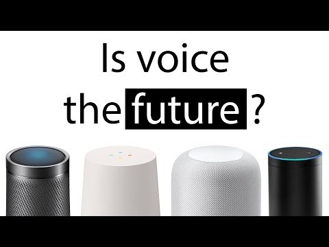 Is voice really the future of computing?