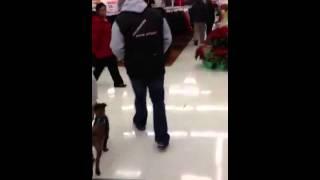 Dogs Of Walmart