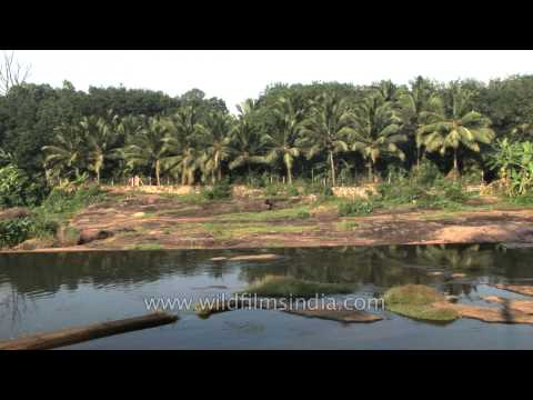Landscape view of Thiruvalluvar Temple Area - Chennai