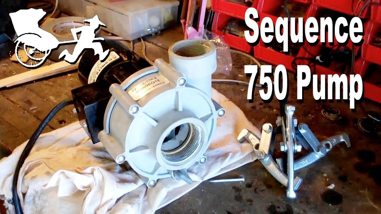 sequence 750 pump a o smith motor repair [ 1280 x 720 Pixel ]