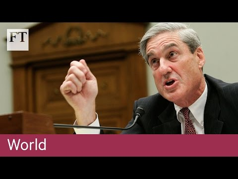 What is a special counsel?