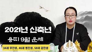 [백련사]신축년 양력 9월 용띠 운세!!