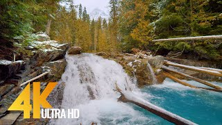 4K Best Scenic Naтure Places of Canada in Wintertime - Relaxation Video with Nature Sounds - Part #3