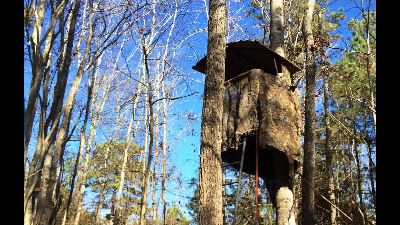 Deer Stand Deer Blind Youtube