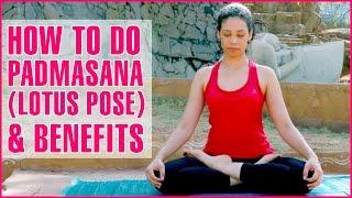 How To Do PADMASANA (LOTUS POSE YOGA) & Its Benefits