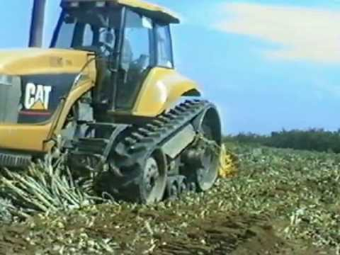 Suokone Meri Pineapple plant crushing in Indonesia