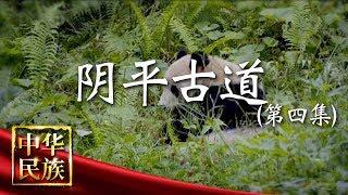 《中华民族》 20190624 阴平古道 第四集 共生| CCTV