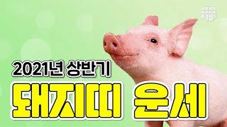 (서울점집) (운세) 2021년 상반기 돼지띠 운세!! [점점TV]