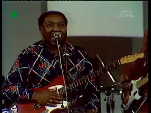 Muddy Waters - Kansas City - 1976