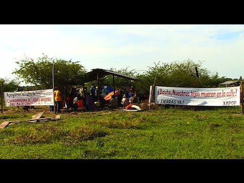 Paraguayan Indigenous Community Reoccupies Territory After Two Decades of Forced Expulsion
