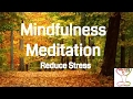 Guided Mindfulness Meditation To Reduce Stress *10 Minutes* Positive Meditation for Positive Energy