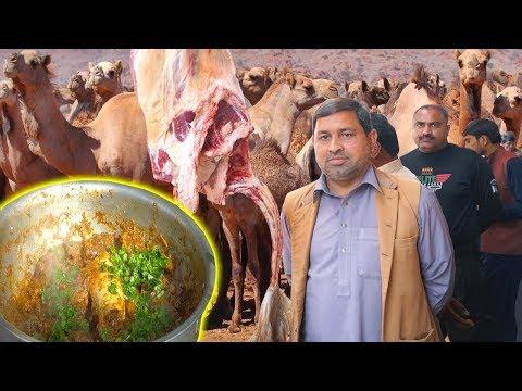 dunia-ki-sab-say-bari-camel-market-aor-camel-meat-karahi- -camel-meat-karahi-recipe-by-hafiz-naveed