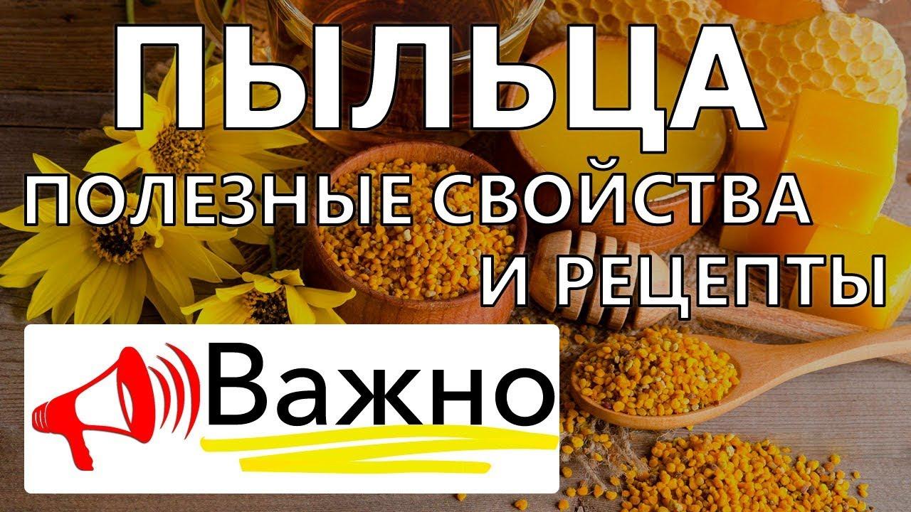 Как выбрать и купить пчелиную пыльцу. Лечение. Москва: след. Рабочий день цена 250 р,. Пошаговая инструкция по применению цветочной пыльцы.