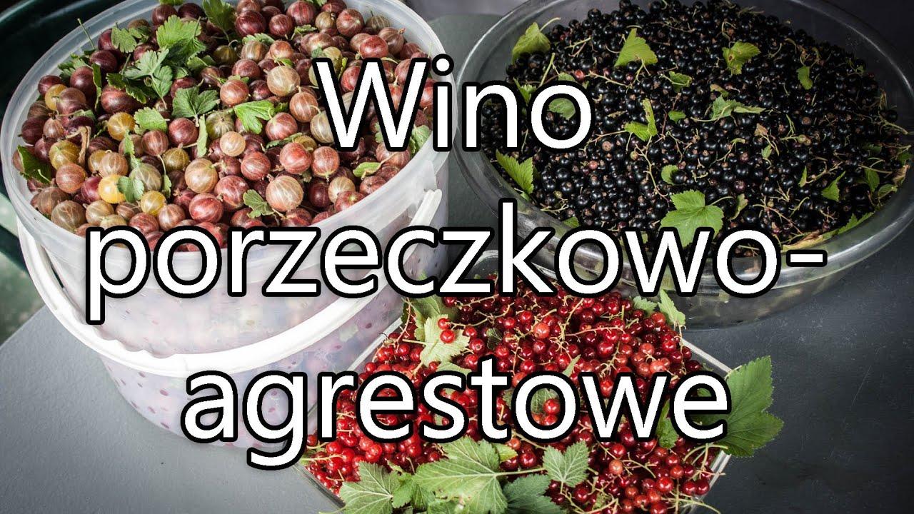 Jak zrobić wino porzeczkowo-agrestowe - prosty przepis