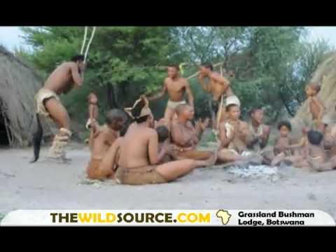 Full Download] San Bushman Healing Dance Botswana Africa