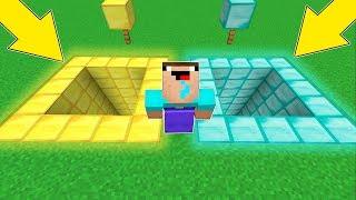 Minecraft Battle - NOOB vs PRO : DIAMONDS VS GOLD ! WHICH PIT WILL NOOB CHOOSE ? (Animation)