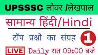 हिंदी टेस्ट | Hindi Test | Hindi MCQs | upsssc hindi | upsssc lower pcs hindi | lekhpal hindi test