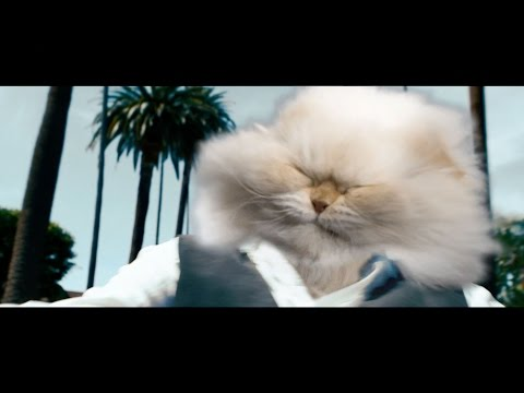 Stereolizza – Cool Cat