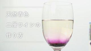新発売 「青い森の天然青色りんごコンセントレイト」 天然青色二層ワイ...