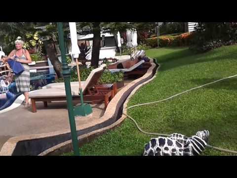 Отель Best Western Phuket Ocean Resort 3+*.Тайланд. Пхукет. Карон.