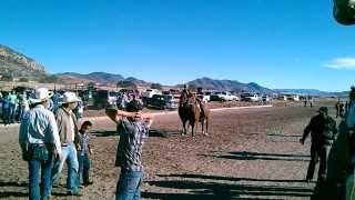 el indio de guachochi en balleza chihuahua 2014