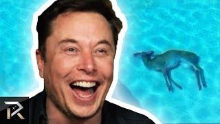 10 Unbelievable Things Elon Musk Secretly Enjoys