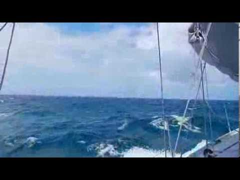 BDX/ Leg 2 - Circumnavigation - Calm after Storm - W. of Tasmania
