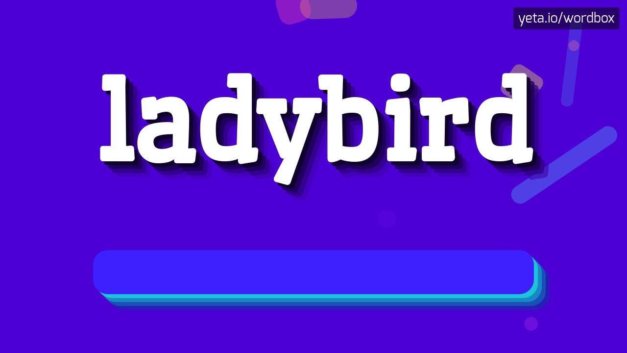 LADYBIRD - HOW TO PRONOUNCE IT!?
