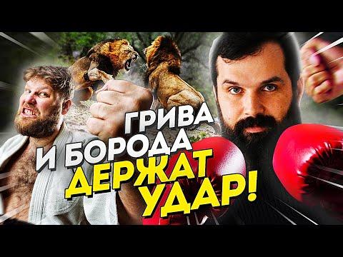 Пещерные львы, защитная борода и судьба неандертальцев - Новости АНТРОПОГЕНЕЗ.РУ