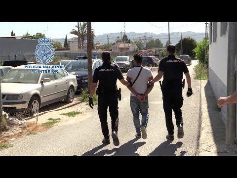 Quince detenidos y cinco puntos de cultivo de marihuana desmantelados en Murcia