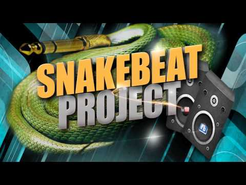 Snakebeat Project Megamix # 2
