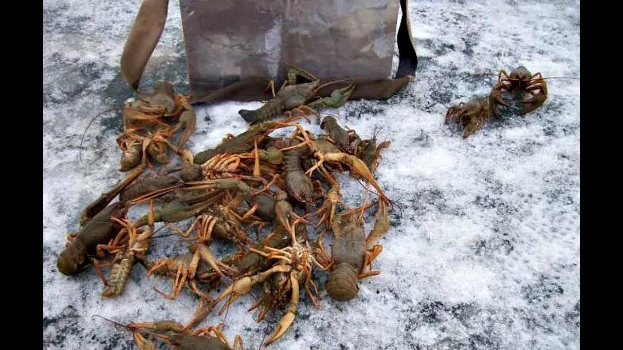Как ловить раков зимой?